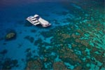 Great Adventures: Green Island and Great Barrier Reef Adventure