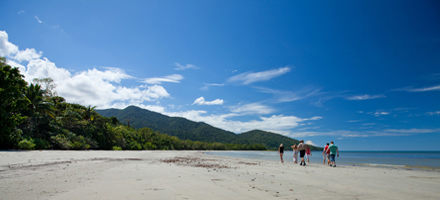 Cape Tribulation 4