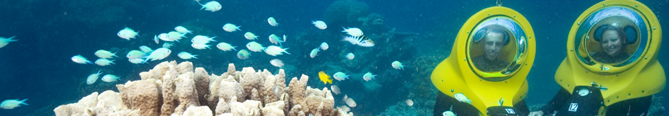 Great Adventures: Great Barrier Reef Adventure