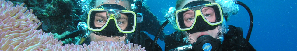 Pro Dive: PADI 5 Day Learn to Dive