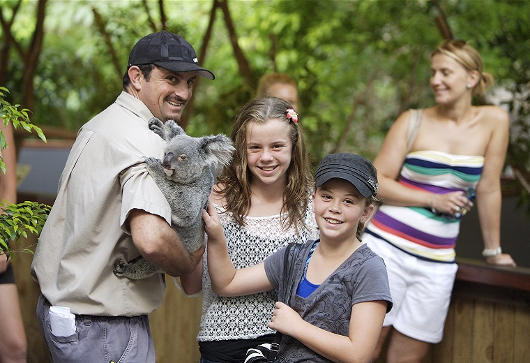 Hartleys Koala Pat